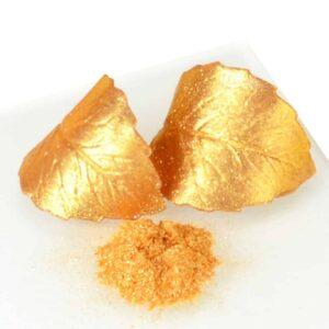 Lebensmittelfarbe Gold sparkle 10 g V01