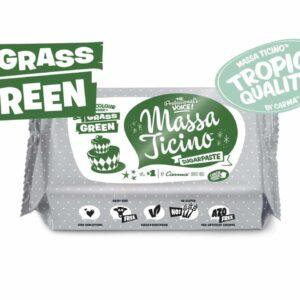 Massa Ticino Tropic grün 250 g V02
