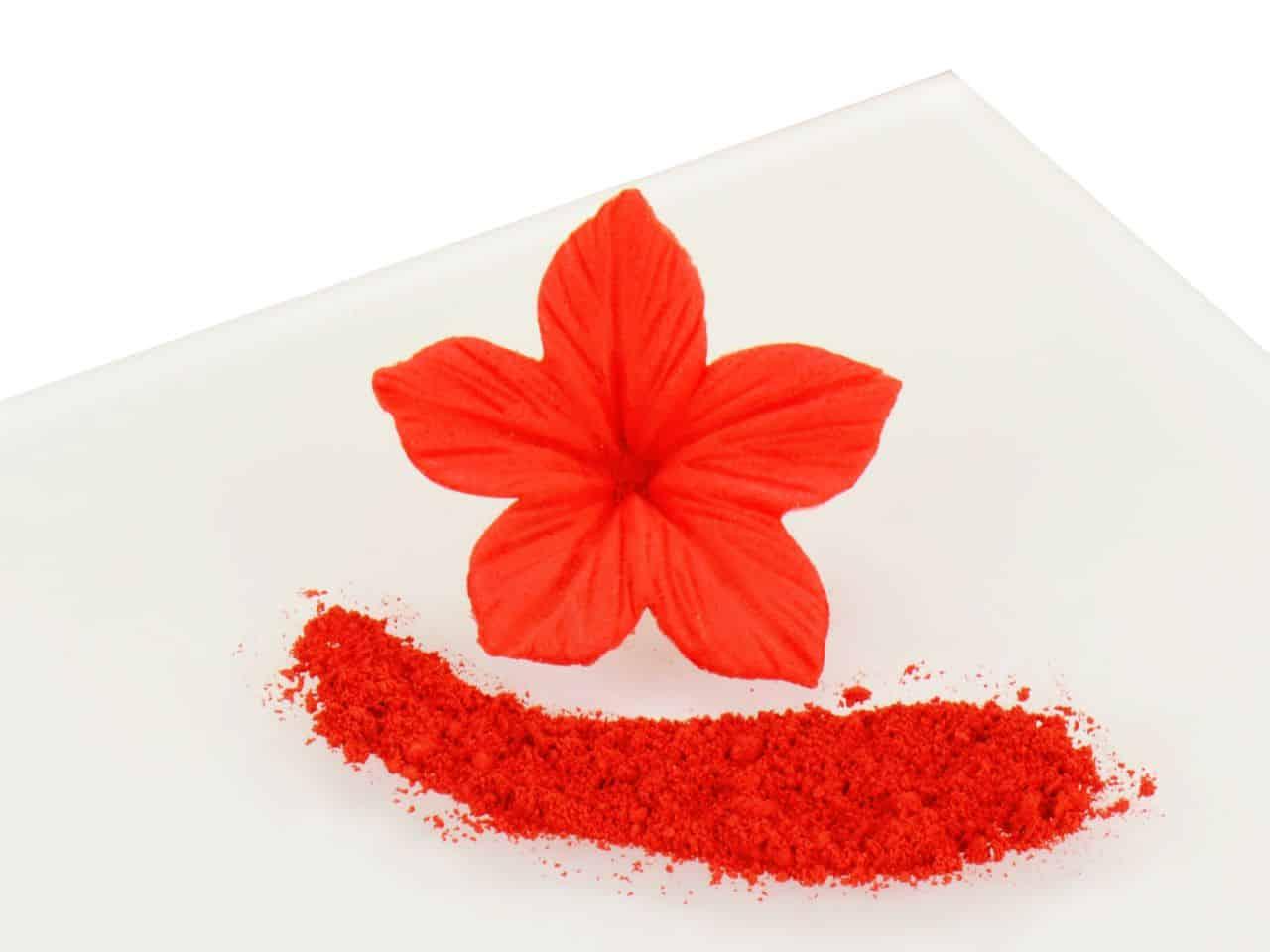 Puderfarbe Cherry Pie - Red 2,5 g V01