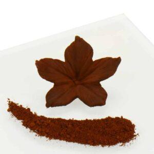 Puderfarbe Brown - Chocolate 2 g V01