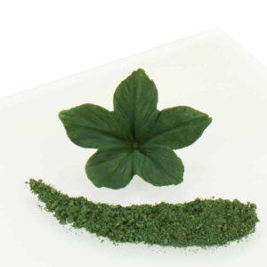 Puderfarbe Olive Green 2,5 g V01