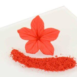 Puderfarbe Poppy Red 2,5 g V01