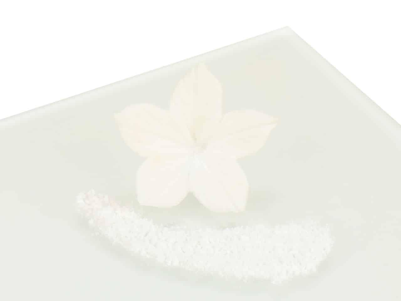 Puderfarbe White - Snow Drift 5 g V01