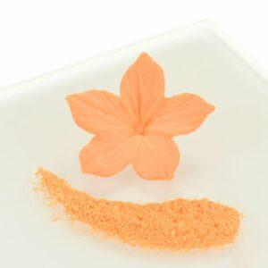 Puderfarbe Peach Delight 4 g V01