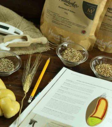 Brot Fachkunde - Online-Kurs